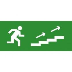 Пиктограмма (наклейка) для TLM ЭП14 По лестнице вверх направо 140x280 мм | ЭП14 140280 | TechnoLux
