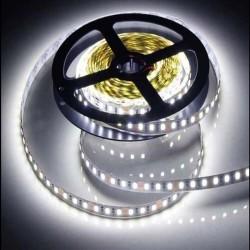 Лента светодиодная GLS-2835-120-9,6-12-6 9,6Вт 12В 6500К IP20 5м   501410   General