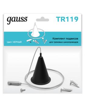Комплект подвесов для трековых шинопроводов, цвет черный | TR119 | Gauss